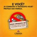 Combate à Dengue 2020