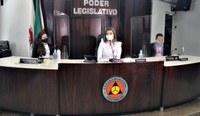 Combate à violência contra a mulher é discutido na Câmara de Ituiutaba